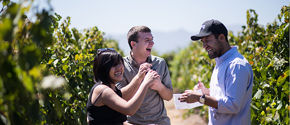 Students Alim Leung, Chris Curtis and Andres Espinoza taste grapes of different varieties as they research Chile's wine industry for a course at U-M's Ross School of  Business. (Credit: Austin Thomason - Michigan Photography)