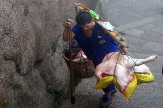 A Chinese porter carries parts of a butchered hog up Huangshan, or Yellow Mountain.