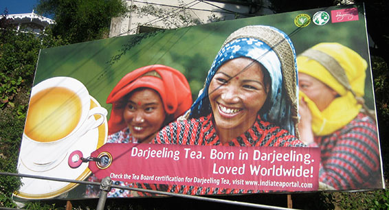A billboard for the world renown Darjeeling tea. (Credit: Sarah Besky)