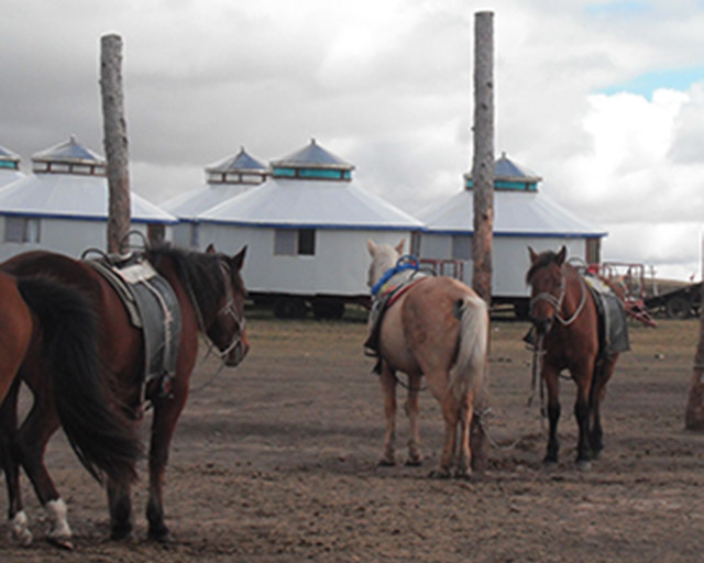 CGIS-Mongolia