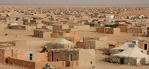 The Laayoune refugee camp in Algeria where Haveland volunteered.