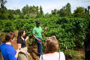 Mutai Kinyua shows off his plantation to U-M Engineering students.