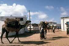 Rural life in Somaliland. Credit: World66.com